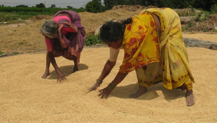 Kleinbäuerinnen Indien