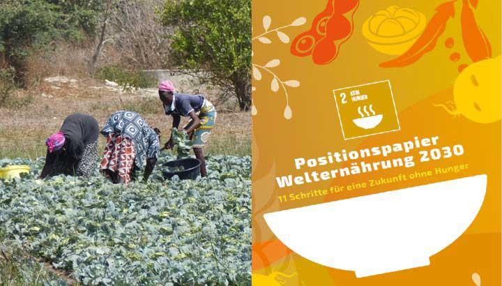 Welternährung Positionspapier 46 NROs