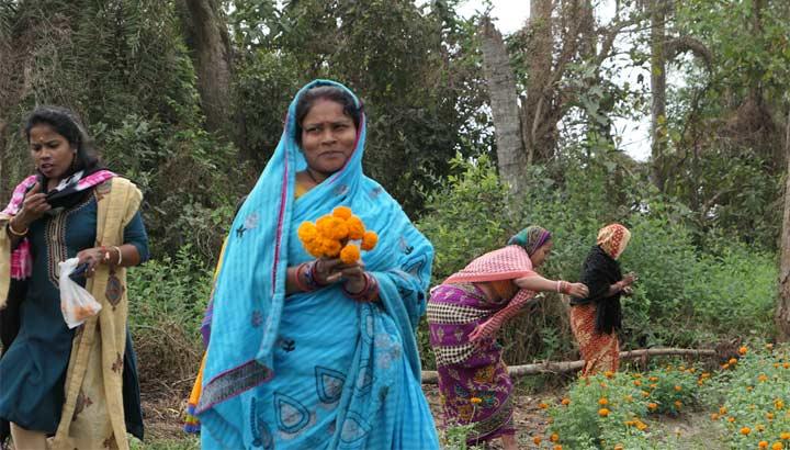 Blumenzucht beim ASW-Partner JJS in Odisha