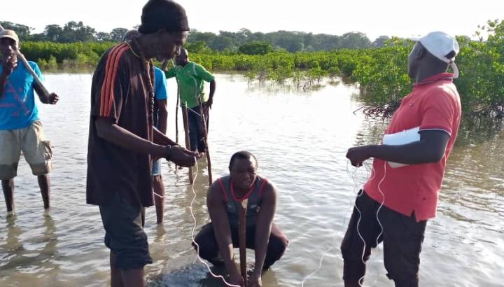 nachhaltige Fischzucht im Senegal