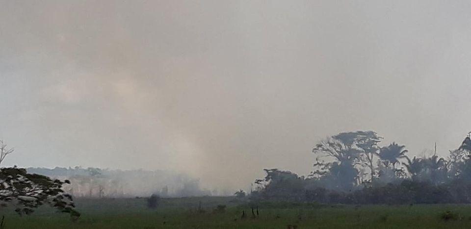 Der Regenwald am Amazonas brennt